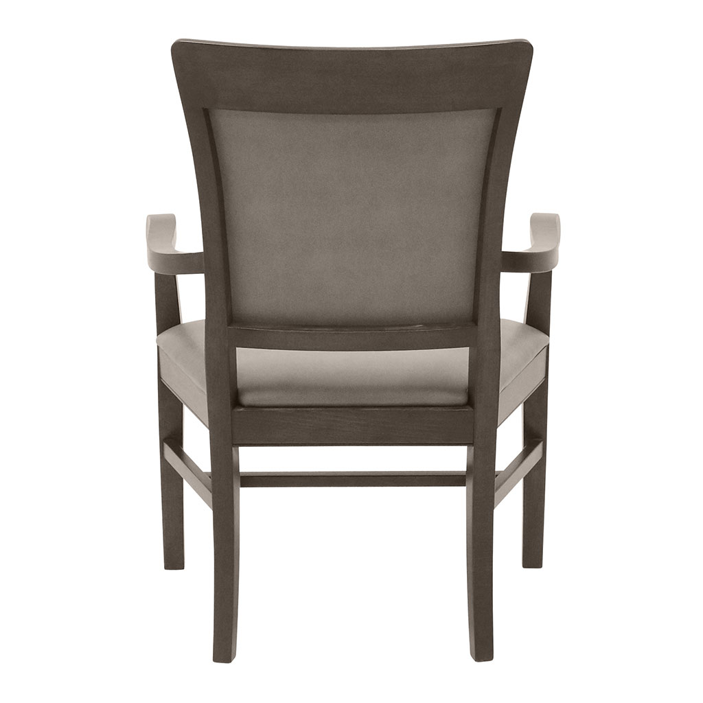 Remy Bariatric Arm Chair | Holsag