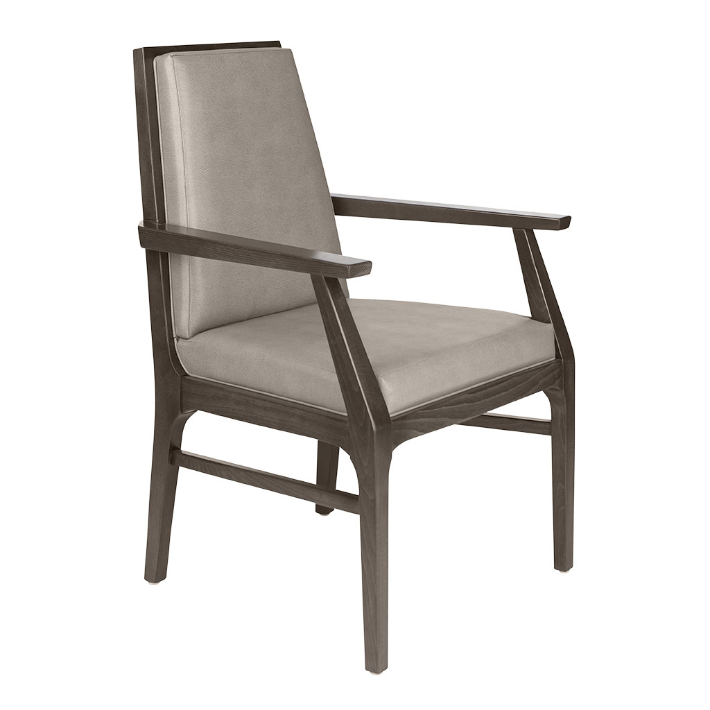 Lucca Arm Chair